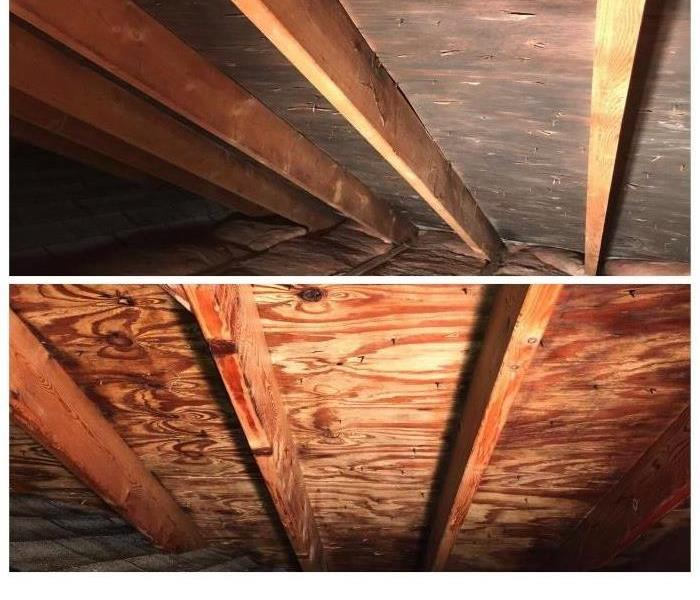 Any Home Or Business Attic Can Fall Victim To Mold If A