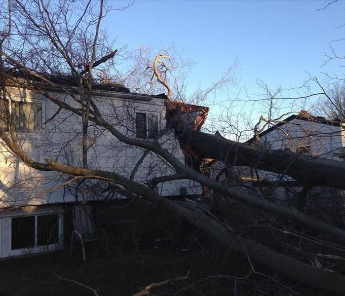 Storm Damage How to Prepare for a Windstorm