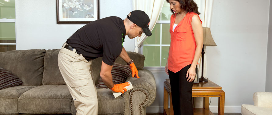 Rochester Hills, MI carpet upholstery cleaning