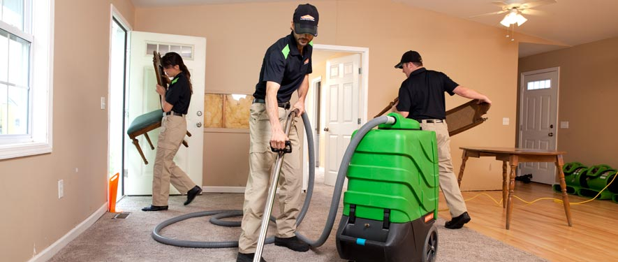 Rochester Hills, MI cleaning services