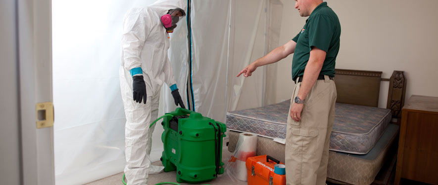 Rochester Hills, MI mold removal process